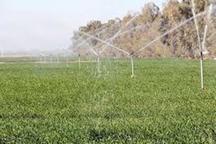 614 پروژه کشاورزی گلستان با حضور رییس جمهوری بهره برداری شد