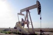 یک میدان نفتی جدید در مینوشهر کشف شد
