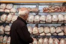 138 تن گوشت برای تنظیم بازار در جهرم توزیع شد