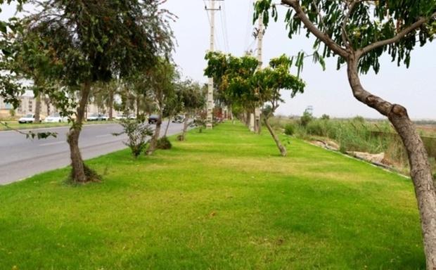 ایستگاه تحقیقاتی فضای سبز پایتخت راه اندازی می شود
